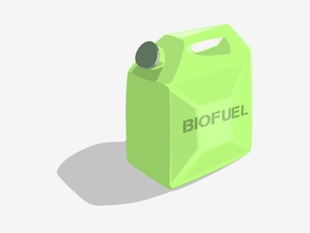 Биотопливо порождает новые вопросы